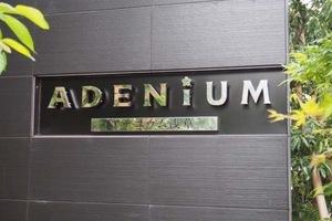 アデニウム浅草の看板
