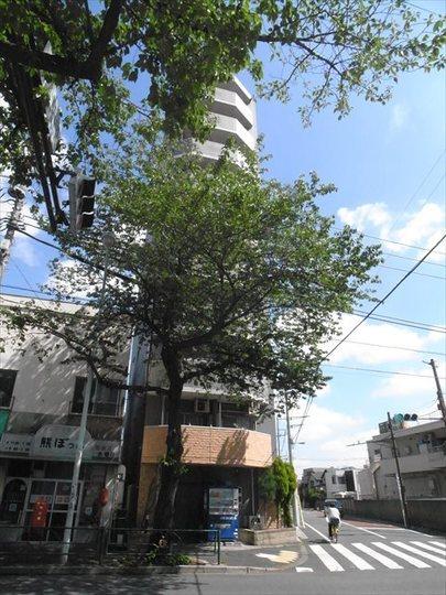 グランヴァン中野江古田の外観