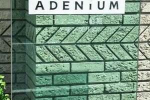 アデニウム船堀グランブリエの看板