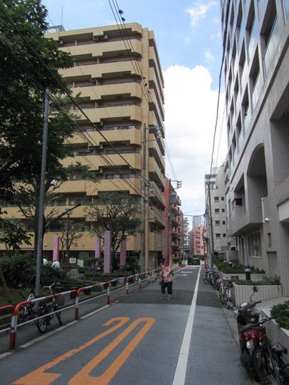 ライオンズマンション新宿東公園の外観