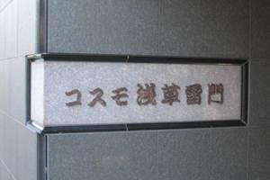 コスモ浅草雷門の看板