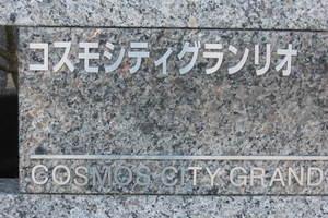 コスモシティグランリオの看板