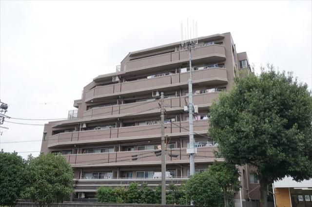 ナイスブライトピア新川崎の外観