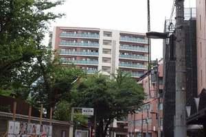 クオリア千代田御茶ノ水の外観
