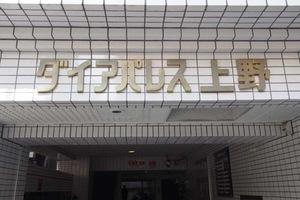 ダイアパレス上野の看板