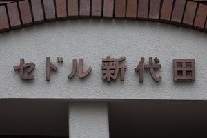 セドル新代田の看板
