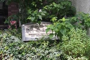 菱和パレス東十条駅前の看板