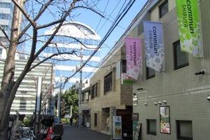 シャトーポレール渋谷の外観