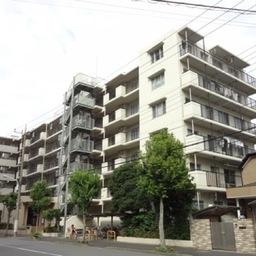 コスモ葛飾鎌倉