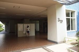 越中島3丁目ハイツ(1〜3号棟)のエントランス