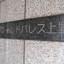 ワールドパレス上野の看板